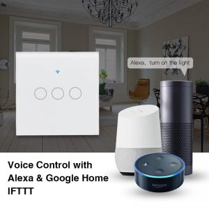 Work with Alexa & Google Assistant